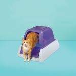 best self-cleaning litter box