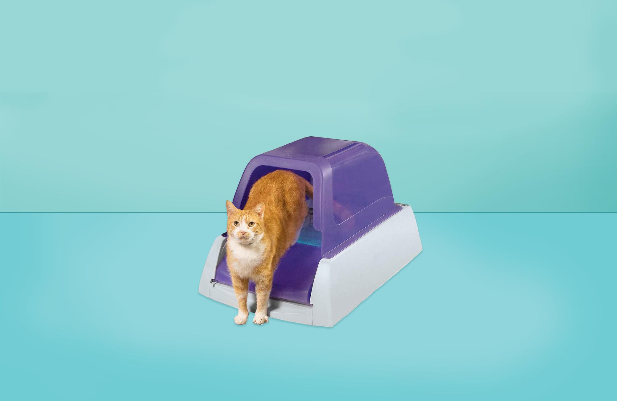 best self-cleaning litter box