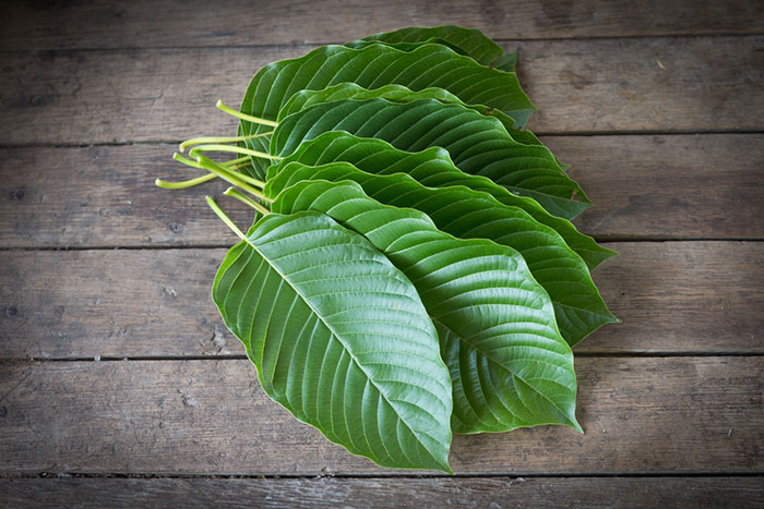 Using Kratom for Workouts