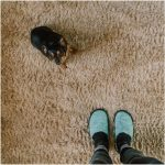 5 Carpet Removal Hacks Only the Pros Know